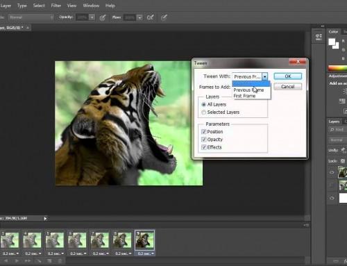 Cómo crear y usar los GIF en los correos electrónicos